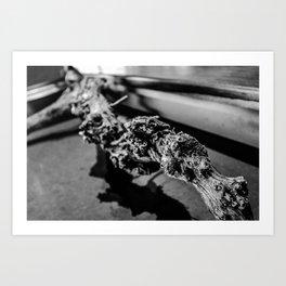 Branche Art Print