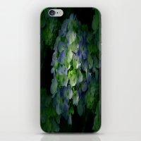 hydrangea iPhone & iPod Skins featuring Hydrangea by Sartoris ART