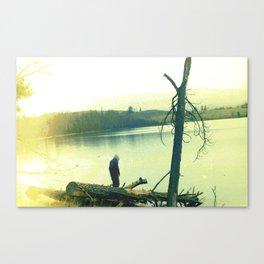 Pripyat Canvas Print