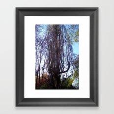 Big hazelnut - shrub. Framed Art Print