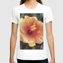 Chinese Rose Flower T-shirt