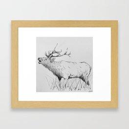 Bugle Framed Art Print
