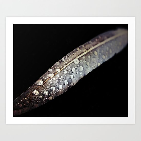 Feather dew Art Print
