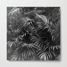 Palm Leaves Art Tropical Plants Rainforest Photography Jungle Metal Print
