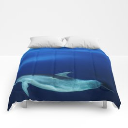 Dolphin, blue and sea Comforters