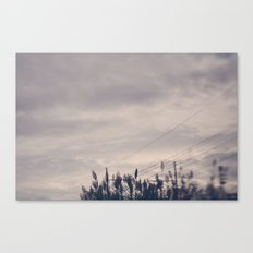 Flawless Canvas Print
