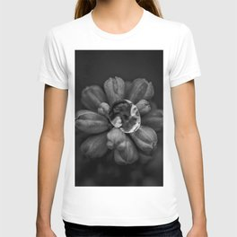 Dewdrop on Hyacinth blossom floral black and white photograph / photography T-shirt