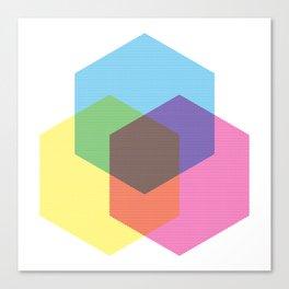 Hexagon Tricolore Canvas Print