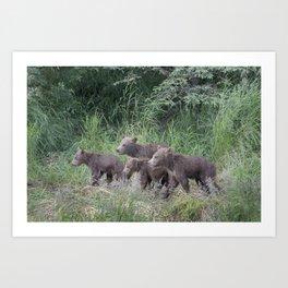 Four Brown Bear Cubs Art Print