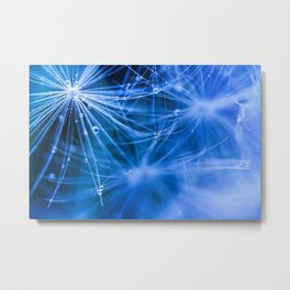 Dandelion fluff... 2 Metal Print