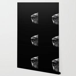 Sneaky Dog Wallpaper