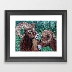 Rams Framed Art Print