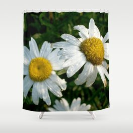 Rain Kissed Daisy Duo Shower Curtain