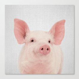 Pig - Colorful Canvas Print