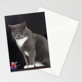 One-eyed Jack. Rescued Kitty. Scarred but Loved & Happy. Stationery Cards