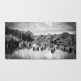 Dead Lakes Florida Black and White Canvas Print