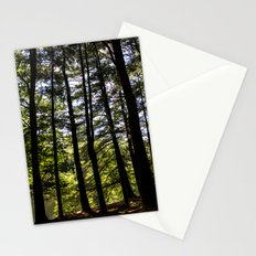 Stand of Trees Stationery Cards