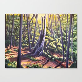 Last of the Light Canvas Print