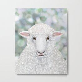 Corriedale sheep farm animal portrait Metal Print