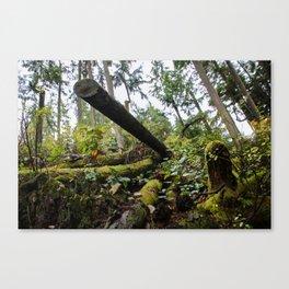 chopped down Canvas Print