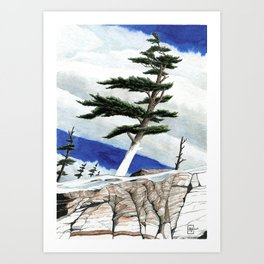 Windy Winter Art Print