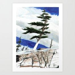 Windy Winter Art Print