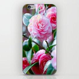 Pink Camelias iPhone Skin