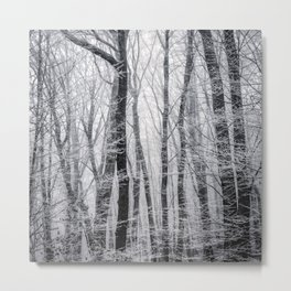 White Snow Forest (Black and White) Metal Print