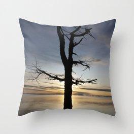 Shadow tree at dawn - Khövsgöl Mongolia Throw Pillow