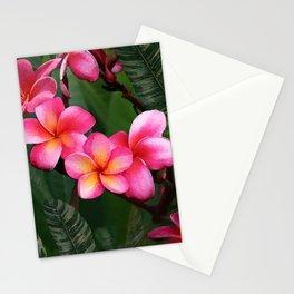 Hawaiian Sunrise Plumeria Stationery Cards