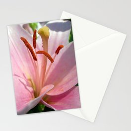 lily detail Stationery Cards