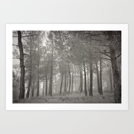 """Misty forest"" Art Print"