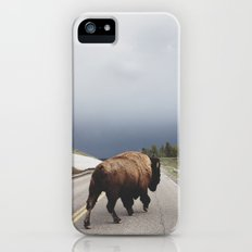 Street Walker iPhone (5, 5s) Slim Case