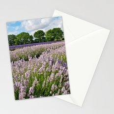 Hampshire Lavender Stationery Cards