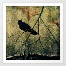 Old Curtain Art Print