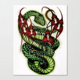 Dracula anthracina/Trimereserus vogeli in color Canvas Print
