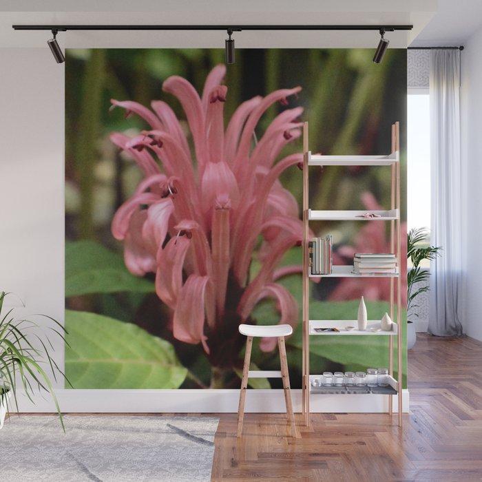 Pink Tropical Wonder Wall Mural
