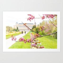 Paris In Springtime Art Print