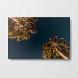 TROPICAL PALM Metal Print