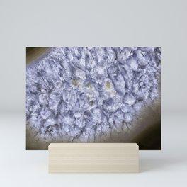macro geode crystals Mini Art Print