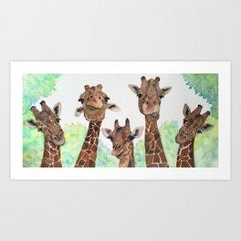 Giraffe's Family Portrait by Maureen Donovan Art Print