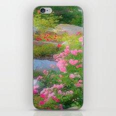 rose dream iPhone & iPod Skin