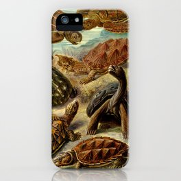 Sea Turtle Collage-Ernst Haeckel iPhone Case