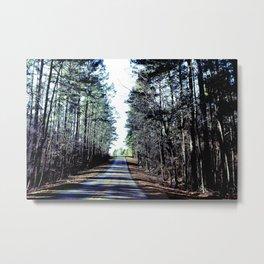 Farm Road Metal Print