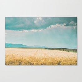 Harvest Shadow Canvas Print
