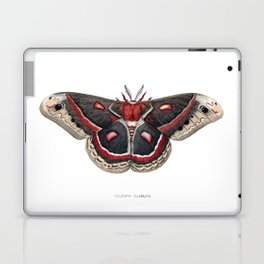 Cecropia Moth Laptop & iPad Skin