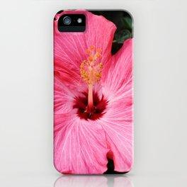 Five Pink Petals iPhone Case