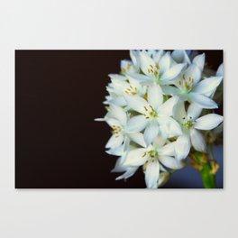 FLOWER! ;) Canvas Print