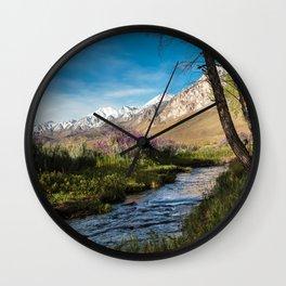 Eastern Sierra Springtime Babbling Brook   4-6-20  Wall Clock
