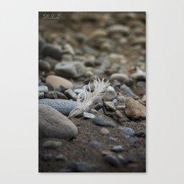 ... walk on the beach ... Canvas Print